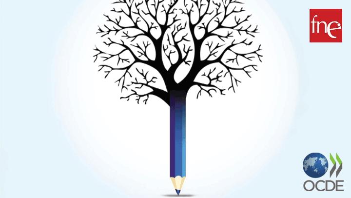 FNE apresenta propostas a peritos da OCDE