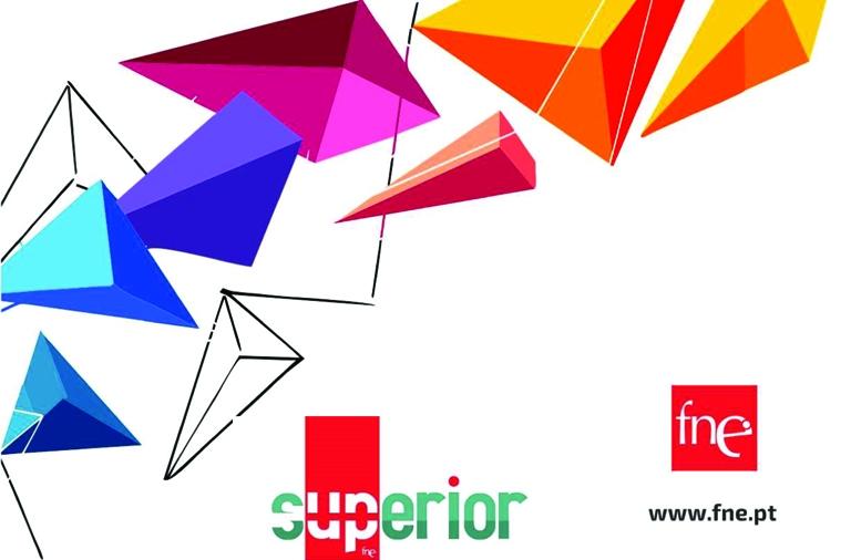 FNE promove Consulta Pública sobre Ensino Superior, Investigação e Inovação - Perspetivas e Propostas